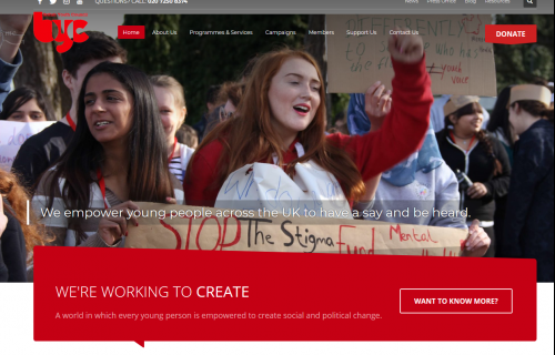 British Youth Council & Youth Parliament